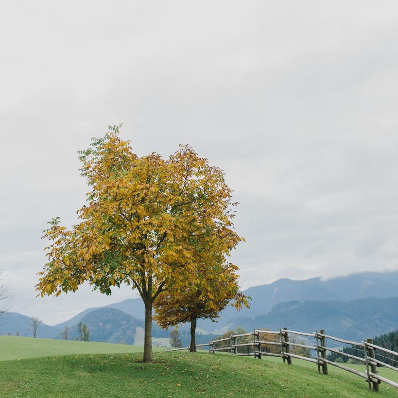 Hochzeitslocation - Winterstellgut - im Herbst